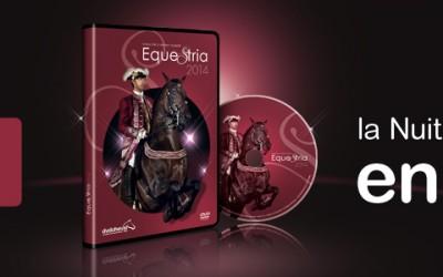 Obatala réalise le DVD du festival Equestria