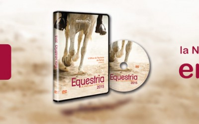 C'est parti pour Equestria 2015!