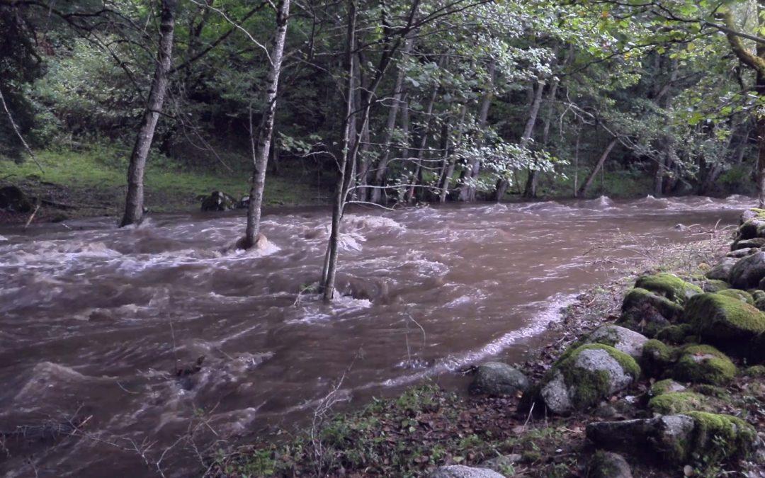 Des lâchers d'eau pour nettoyer les cours d'eau